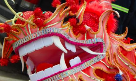 Chinees nieuwjaar zit groothandels dwars
