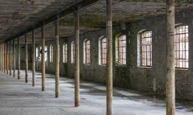 Loods 5 Maastricht: meubelverkopen moeten nog op gang komen