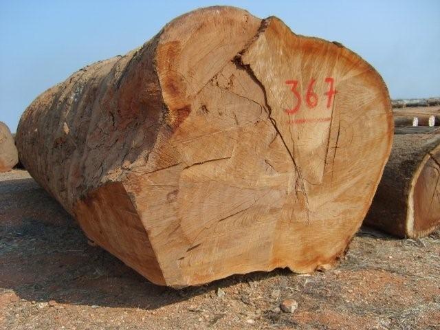 Hoeveelheid tropisch hardhout daalt