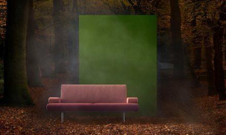 Harvink toont een blik achter de schermen